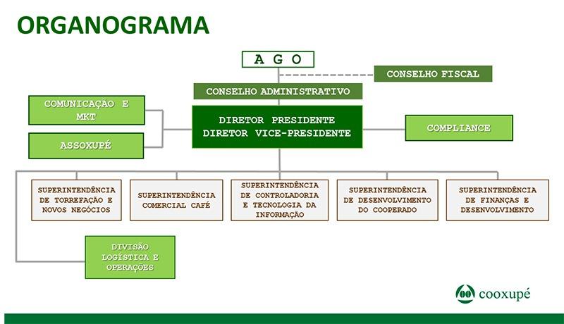organograma-2020