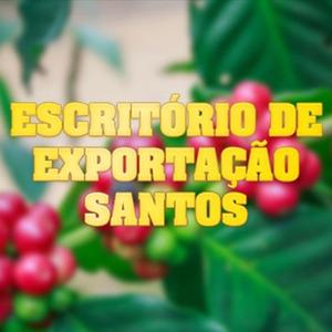 exportacao-2
